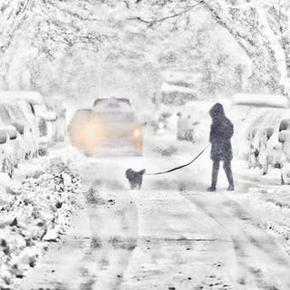 Mitchell Funk, Snow Street New York (2017)