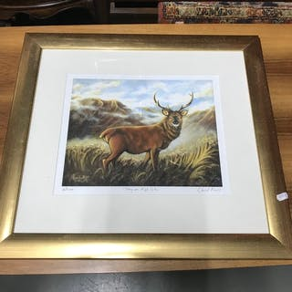 David Kerr limited edition print, 'Stag on High Glen' number...