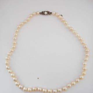 A row of cultured pearls with Continental clasp marked 925