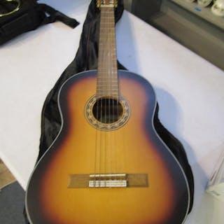 A Valencia Spanish acoustic guitar in a slip case