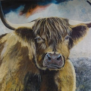 "Clive Fredriksson, oil on canvas, Highland cow, 40"" x 40"", u..."