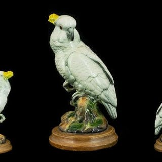 Vintage Cockatoo Figure raised on a wooden base, this attrac...