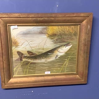 Framed oil painting of a pike fish in a reed bed 32 X 41 cm