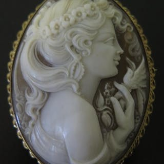 A Large 9ct Gold Framed Shell Cameo Brooch, 64x50mm, 20.1g