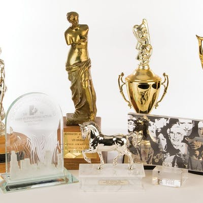 Martin Landau personal collection of (7) acting awards and honors.