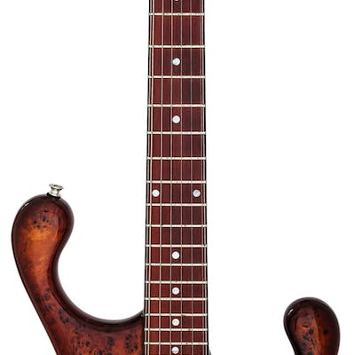 2008 Fibenare Erotic Dalmat The 100th Deep Cherry-Burst II Solid Body