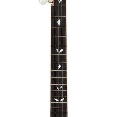 5-String Parts Banjo....
