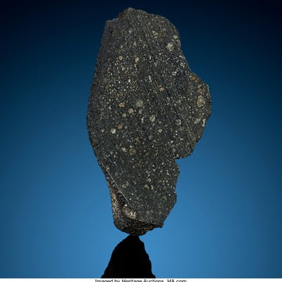 Murray Meteorite Carbonaceous Chondrite, CM2 Calloway County, Kentucky