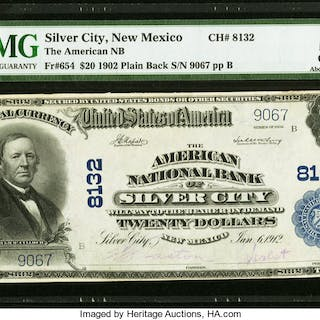 Silver City, NM - $20 1902 Plain Back Fr. 654 The American NB Ch.