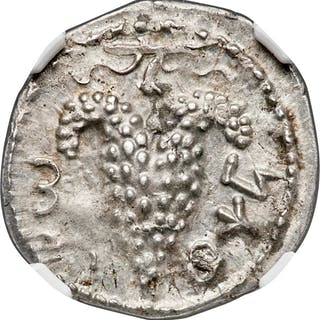 JUDAEA. Bar Kokhba Revolt (AD 132-135). AR zuz (19mm, 3.42 gm, 7h).