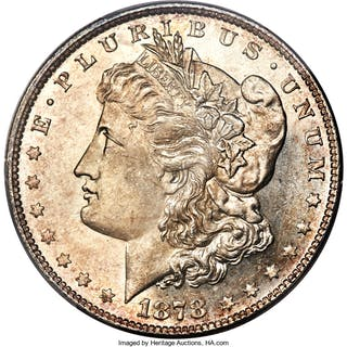 1878 8TF $1 VAM 4 Denticle Chip