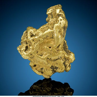 Gold Nugget Yukon-Koyukuk Census Area Alaska, USA  ...
