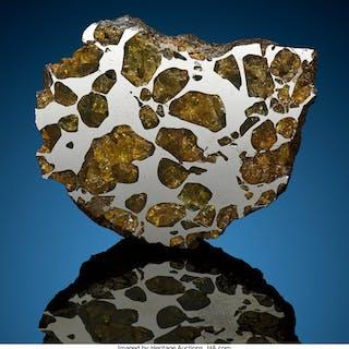 Imilac Meteorite End Cut Pallasite, PMG Chile Found: 1822  ...