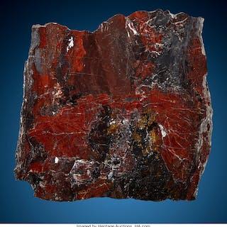Stromatolite Slab Biwabik Iron Formation Mary Ellen Mine, Mesabi Range