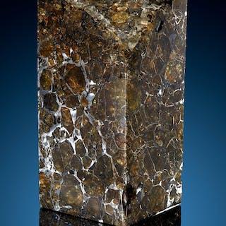 Brahin Meteorite Block Pallasite, PMG Gomel', Belarus - (52° 30'N