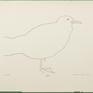 "Beth van Hoesen,""Gull,"" 1964"