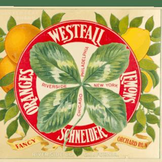 """Fruit Label - """"Clover Leaf Brand"""" Oranges and Lemons by Westfall Schneider"""