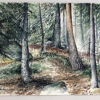 """Sommarskogen"" Watercolor by Ingvar Andersson. 51 x 37 cm"