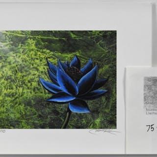 Christopher Rush Magic The Gathering Black Lotus