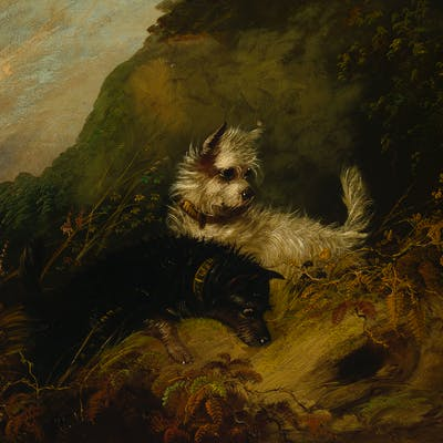 Attributed to George Smith Armfield (1808-1893 British)