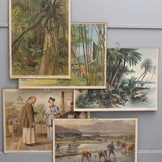 SKOLPLANSCHER, 5 ST, tropiska miljöer, 1900-talets första hälft.