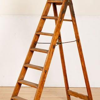 Simplex library ladder