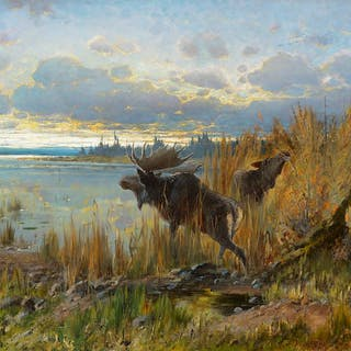 John Fery (1859–1934): Early Morning Moose, Northern Montana