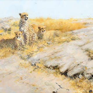 David Shepherd (1931–2017): Cheetah Lookout (2003)