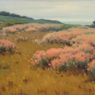 John Marshall Gamble (1863–1957): Wild Buckwheat near Monterey