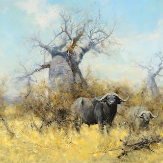 David Shepherd (1931–2017): Cape Buffalo