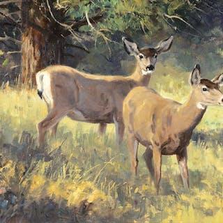 Ken Carlson (b. 1937): Mountain Meadow – Mule Deer