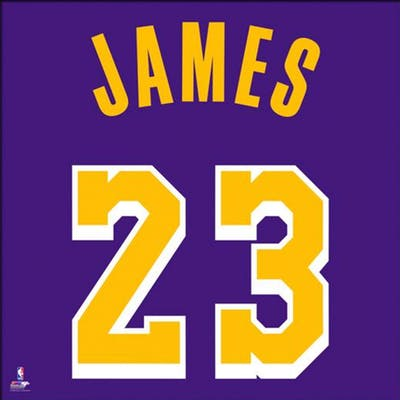 separation shoes e4d5d 760a3 LeBron James Los Angeles Lakers 20x20 Custom Framed Jersey ...
