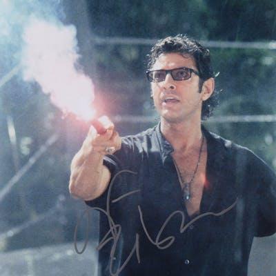 "Jeff Goldblum Signed ""Jurassic Park"" 11x14 Photo (PSA COA)"