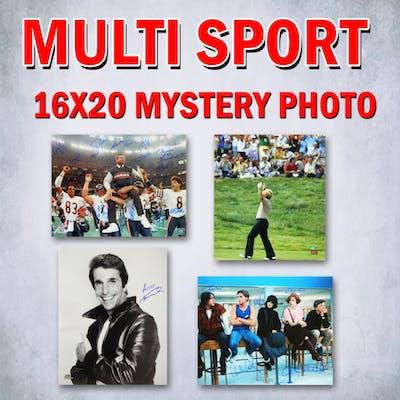 Schwartz Sports Multi-Sports & Celebrity Signed Mystery 16x20 Photo