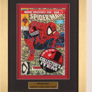 """""""The Amazing Spider-Man: The First Issue"""" 13x17 Custom Framed Comic"""