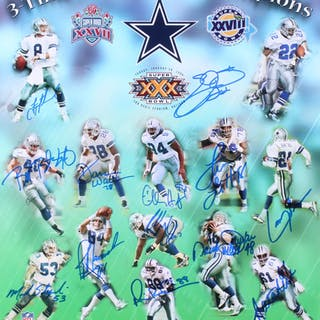 Dallas Cowboys 16x20 Photo Team-Signed by (13) with Troy Aikman, Emmitt