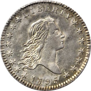 1795 Flowing Hair Half Dollar. O-109, T-16. Rarity-4. Two leaves.