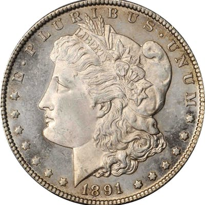 1891-CC Morgan Silver Dollar. Unc Details--Altered Surfaces (PCGS).
