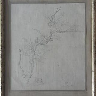 Christian Emil Andersen: Study of a tree
