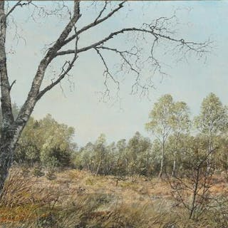 Ole Ring: A clearing on the outskirts of a forest