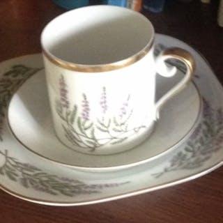 Kaffe servis-Kaffe kopp med fat- Hackefors-Ljung