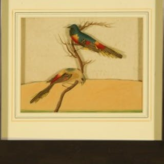 HEIC Painting of Exotic Indian Birds