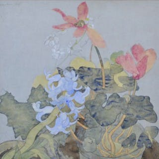 Hyacinth and Cyclamen
