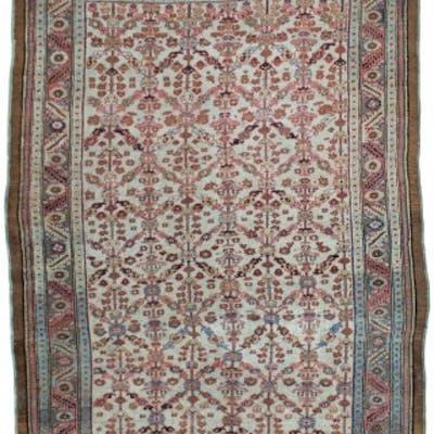 Rare ivory Antique Bakshaish rug, Persia