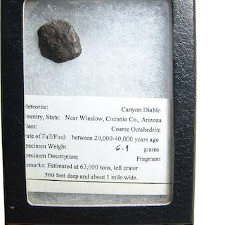 An iron meteorite specimen from Canyon Diablo