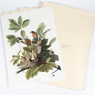 Audubon Society Abbeville Press Elephant Portfolio