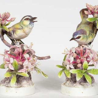 Pair, Doughty Red Eyed Vireo with Original Boxes