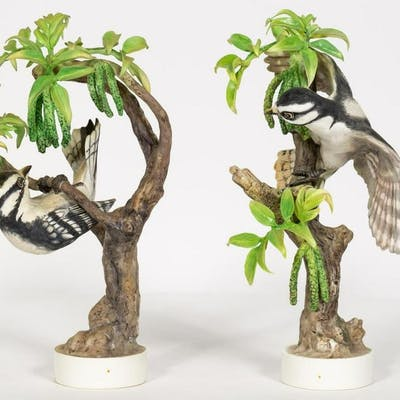 Pair, Doughty Downy Woodpeckers with Orig. Boxes
