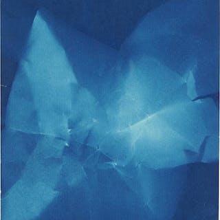 Walead Beshty (American, B. 1976) Untitled (Blue Fish).