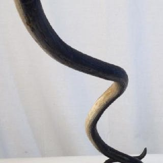 Painted Wooden Snake Sculpture
